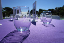 Taste of Arcadia Wine Glasses